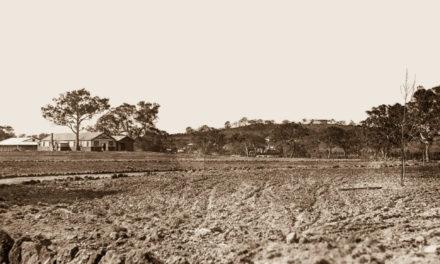 Mont Park Farm