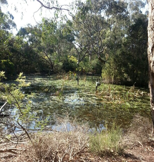 La Trobe Wildlife Sanctuary area – Mont Park and Larundel